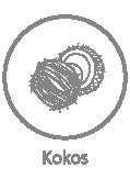 kokos-01.png